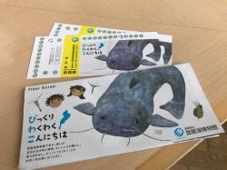 家族で琵琶湖博物...