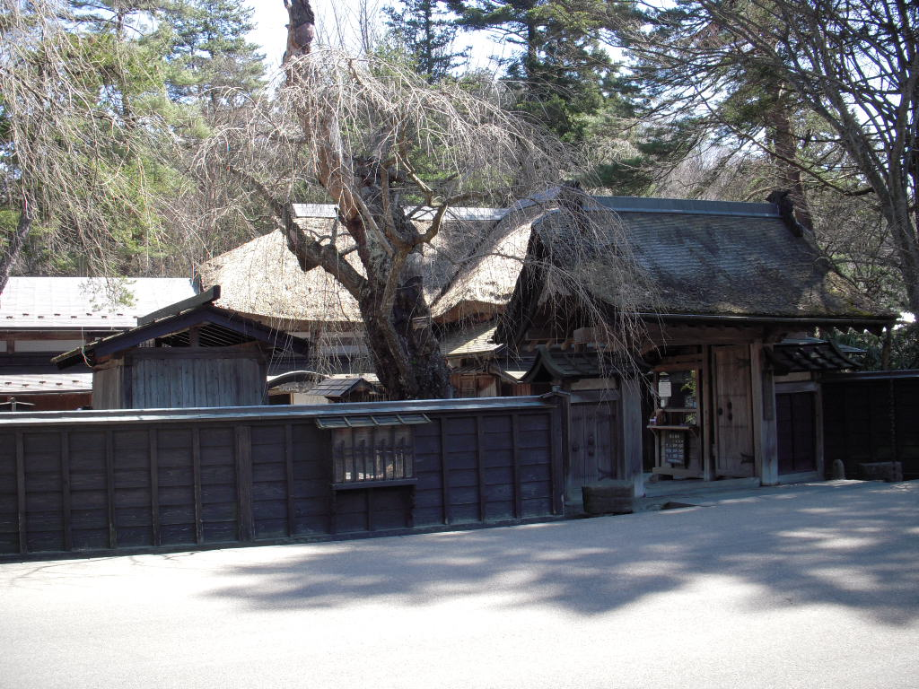 万延元年、藩への功績が認められ特別に許された青柳家の薬医門。2009/04/08 晴天の午前にちょいが撮りました。
